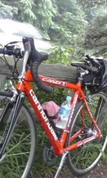 自転車そとに出る